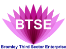 Bromley Third Sector Enterprise logo