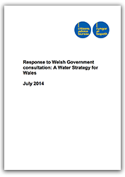 waterstrategycover